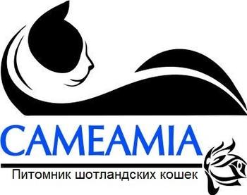 Logo of Cameamia *RU cattery