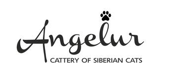 Logo of Angelur *RU cattery